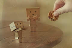 'A balanced diet is a cookie in both hands' (.OhSoBoHo) Tags: cute love me self canon toy japanese robot hand sweet manga kawaii tabletop odc chompchomp danbo hcs amazoncojp cardboardrobot canoneos40d danboard minicookie yotsubai danbolove clichesaturday danbophotography danboscookie