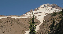 Skyline Trail at Mt Hood Photo