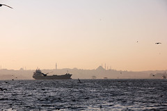 ISTANBUL MINARETI (hauganassy) Tags: skyline canon turkey ship minaret horizon trkiye istanbul nave gabbiani bosphorus battello orizzonte turchia gemi moschee bosforo minareti 550d 18135mm minareler