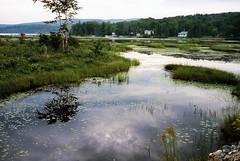 Raquette River (bingley0522) Tags: adirondacks ektar raquetteriver carlzeisstessar40mmf35 rollei35germany