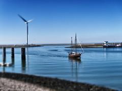 Model-boat (Micha.Ku) Tags: sea summer meer sommer sailingboat