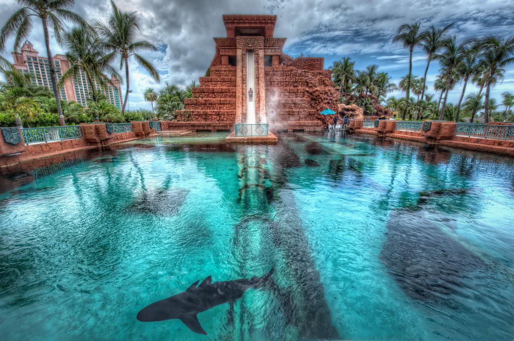 Going down the waterslide into a pool of sharks.
