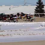 148 - race 9 - Lining up at the Gate thumbnail