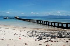 (Pugtastic!!) Tags: beach landscape nikon tour philippines whitesand puertoprincesa palawan dospalmas