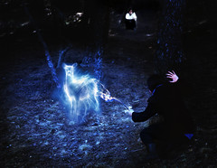 Always (Marina_Monaco) Tags: portrait night forest self woods wand magic harry potter doe spells patronus expecto patronum