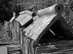 Barn Roof... (cngphotographic) Tags: slindon barn roof tiles clay peg outside outdoors outbuildings westsussex roofing rural england britain countryside summertime architecture architectural building materials old nationaltrust blackandwhite monochrome ridge