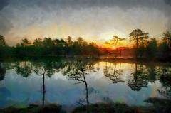 Bog at Sunrise (KalevVask) Tags: kalevvask dap digiart sunrise summer bog swamp estonia redmatrix