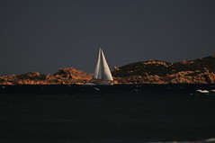 Corsica 2016 (Environmental Artist) Tags: france corsica corse europe beach med mediterranean sea trees sand water waves vague vacance vacation holiday island pure pristine clear happy outdoor