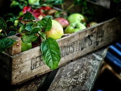 Matlock junk shop - Sunday morning photowalk (RichardK2010) Tags: wood snapseed vignette depthoffield vibrant 75mm green harvest autumn stilllife matlock apple fruit dof zuiko75mmf18 olympuspenf olympusuk