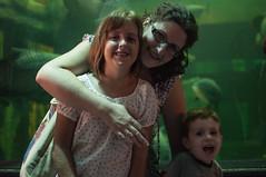 Acuario Agosto 2016 (03) (Fernando Soguero) Tags: acuario zaragoza acuariodezaragoza aragn turismo aquarium nikon d5000 fsoguero fernandosoguero