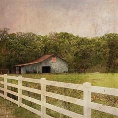 The Barn. #stackables #stackablesapp #texas #barns #fences (peppermcc) Tags: stackables stackablesapp texas barns fences
