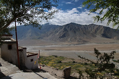 Une vue imprenable... (Dolkar-photographe...) Tags: inde bouddhisme karsha paldar paysage trek zanskar t2016 landscape monastre gompa plainedepadum champs fields