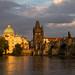Golden Evening in Prague