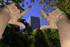 Lookup (swong95765) Tags: trees forest building sky clearing hands arms perspective