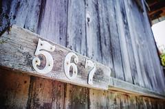 """567"" (Eric Flexyourhead) Tags: edison skagitcounty washington usa building wall wood wooden old wear worn weathered texture grain patina ricohgr"