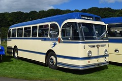 1952 Leyland Royal Tiger PSUI/15/Alexander C41C - W Alexander PC1 (jambox998) Tags: bms 222