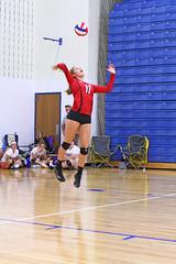 IMG_3040 (SJH Foto) Tags: girls volleyball high school mount olive mt team tween teen teenager varsity serve burst mode