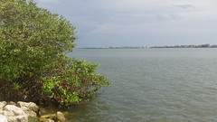 Waterfront (megstrimble) Tags: florida porject365