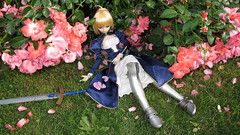 FATE route - fin (annaneko) Tags: roses doll saber dd volks typemoon fatestaynight dollfiedream  fatehollowataraxia