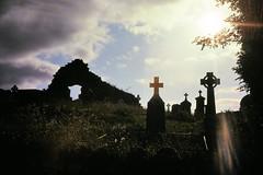 Cemetery with Celtic crosses, Sligo, Ireland. (edk7) Tags: nikkormat ft2 slide edk7 1978 eire ireland sligo cemetery celticcross grave marker m592 tombstone headstone