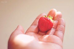 216 | 366 (EsotericMaiden) Tags: red sunlight fruit vintage strawberry hand fingers august 365 hazy windowlight day216 366 365project 366project 216366
