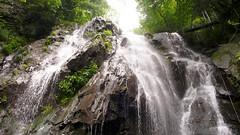 120804 - Anji (5) (evan.chakroff) Tags: china forest waterfall hiking bamboo rafting anji zhejiang evanchakroff chakroff daxigorge