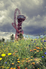 Flowers In The Olympic Park (violinconcertono3) Tags: flowers london architecture landscapes flickr fineart cityscapes structure wildflowers olympics olympicpark orbit mittel fineartphotography davidhenderson london2012 londonist fineartphotographer londonphotographer 19sixty3 19sixty3com