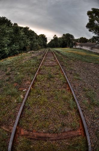 220/365 - Along the Tracks