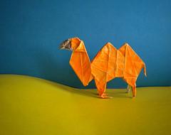 camel by Fumiaki Kawahata (Nikor_ru) Tags: origami kawahata