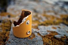 mug-shot (Ray Byrne) Tags: broken yellow coast rocks northumberland shore mug lichen howick raybyrne byrneoutcouk webnorthcouk