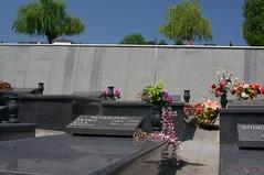 Groblje Bare, Sarajevo (Steve Tatum) Tags: cemetery sarajevo graves ba tombstones groblje bosniaandherzegovina burials