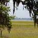 Jekyll Island Scenery 4
