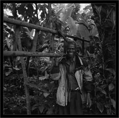 2010-12-08  011web (Yuriy Sanin) Tags: kilimanjaro tanzania blackandwhite negro man trees forest stairs  yuriy sanin mamiya6 6x6 medium format       smiling