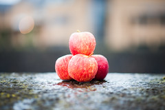 Apples in the Rain (Bennett Photography - jonyb466) Tags: wales natural nature wet raining rain colour green red apples fruit gala bokeh focus nikon d700