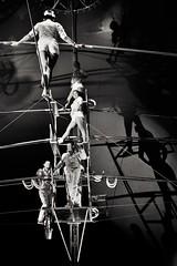 Artist (heiko.moser) Tags: artist circusnock circus zirkus art people personen publicity person leute menschen monochrom mono man noiretblanc nb nero bw blackwhite blancoynegro bern schwarzweiss sw schwarzweis canon city heikomoser