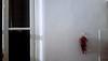 315/365 Sud (darioseventy) Tags: peperoncini chilli spicy hot piccante caldo finestra window cucina kitchen warm luce light muro bianco wall white shadow ombra indoor interno warmness sensuality minimal minimalism minimalismo