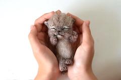 cat-30-3 (Fenekdolls) Tags: toy cat kitten wool felt craft felting art