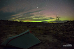 Aurora Tent (kevin-palmer) Tags: kaycee barnum holeinthewall outlawcampground wyoming september fall autumn night sky stars starry astronomy astrophotography dark nikond750 auroraborealis aurora northernlights geomagneticstorm color colorful green red north clouds dead tree tent camping campsite tamron2470mmf28 bigdipper ursamajor astrometrydotnet:id=nova1753589 astrometrydotnet:status=failed