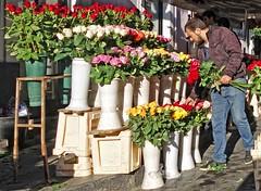- (txmx 2) Tags: catania italy italia sicilia sicily santarita redrose whitetagsrobottags whitetagsspamtags flower vendor seller fiesta festa
