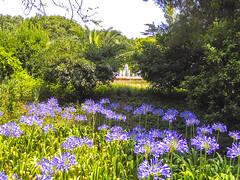 Palau Reial de Pedralbes gardens