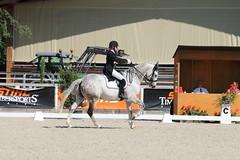 IMG_7376 (dreiwn) Tags: dressage dressur dressuur pferd reitturnier turnierreiten pferdesport horse horseback horseriding equestrian reitverein dressurprfung kandare doublebridle reiten pferde reitplatz ridingarena