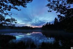 blue morning (yves_matiegka) Tags: lake reflections forest nature sunrise moor jura switzerland