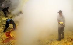 java - ijen (peo pea) Tags: indonesia hell paradise giava java ijen cratere crater volcano vulcano reportage sulfur miners mine minatori zolfo leica laical yellow lake