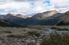 DSC_6306 (AmitShah) Tags: banff canada nationalpark