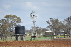 8 foot Intercolonial Boring Company Geared Simplex windmill; Southbrook, Queensland (sarracenia.flava) Tags: ibc intercolonial boring company geared simplex windmill australia southbrook queensland