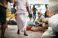 inde_1802164091.jpg (aurelien.mahot) Tags: munnar inde indien asiatique asie indedusud kerala