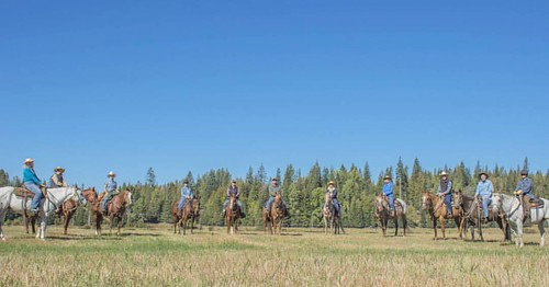 We had a great Adult Horsemanship Week at the ranch! The group worked on improving their horsemanship skills through arena instruction with Vicki Fuller, trail rides, arena games, cattle sorting and even a small cattle drive.   #wpguestranch #adultonly #h