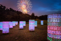 A Successful Plan (ADW44) Tags: philadelphia lights fireworks botanicalgardens longwoodgardens kennettsquare brucemunro