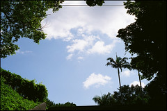 21700011 (ych_2000) Tags: leica macro 50mm fuji kern 100 mp bp reala f19 switar