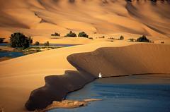 撒哈拉沙漠中的阿尤恩绿洲。